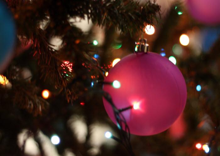 Die Vorständinnen wünschen frohe Weihnachten!